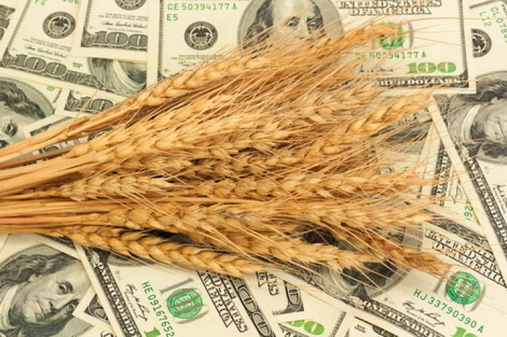 Ukrainian GDP growth supported by bumper grains crop - 06.01.2020