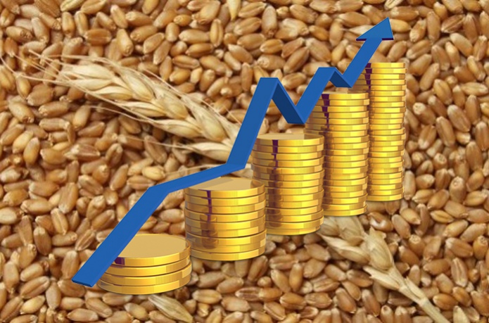 Ukraine entered the TOP 3 of exporters of agricultural products to the EU - 13.01.2020