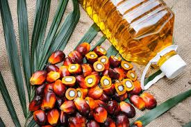 Reuters: Palm oil set for more losses on China coronavirus, India import curbs - 03.02.2020