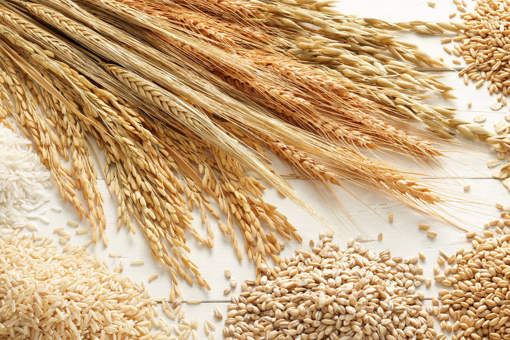 Ukraine harvested over 54 mln tonnes of grains – Ministry of Agrarian Policy