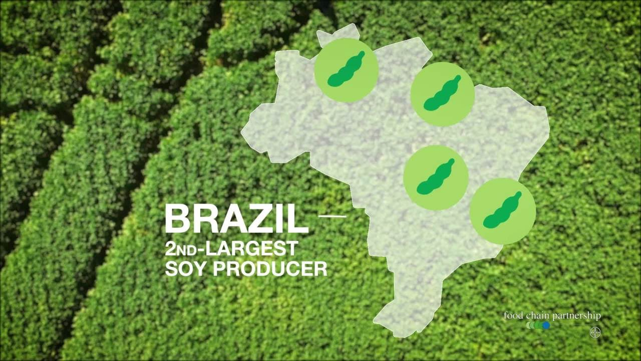 Brazil is Best Game in Town When it Comes to Soybean Exports - 03.03.2020