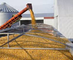 Low importers demand pressed corn prices down - 05.03.2020