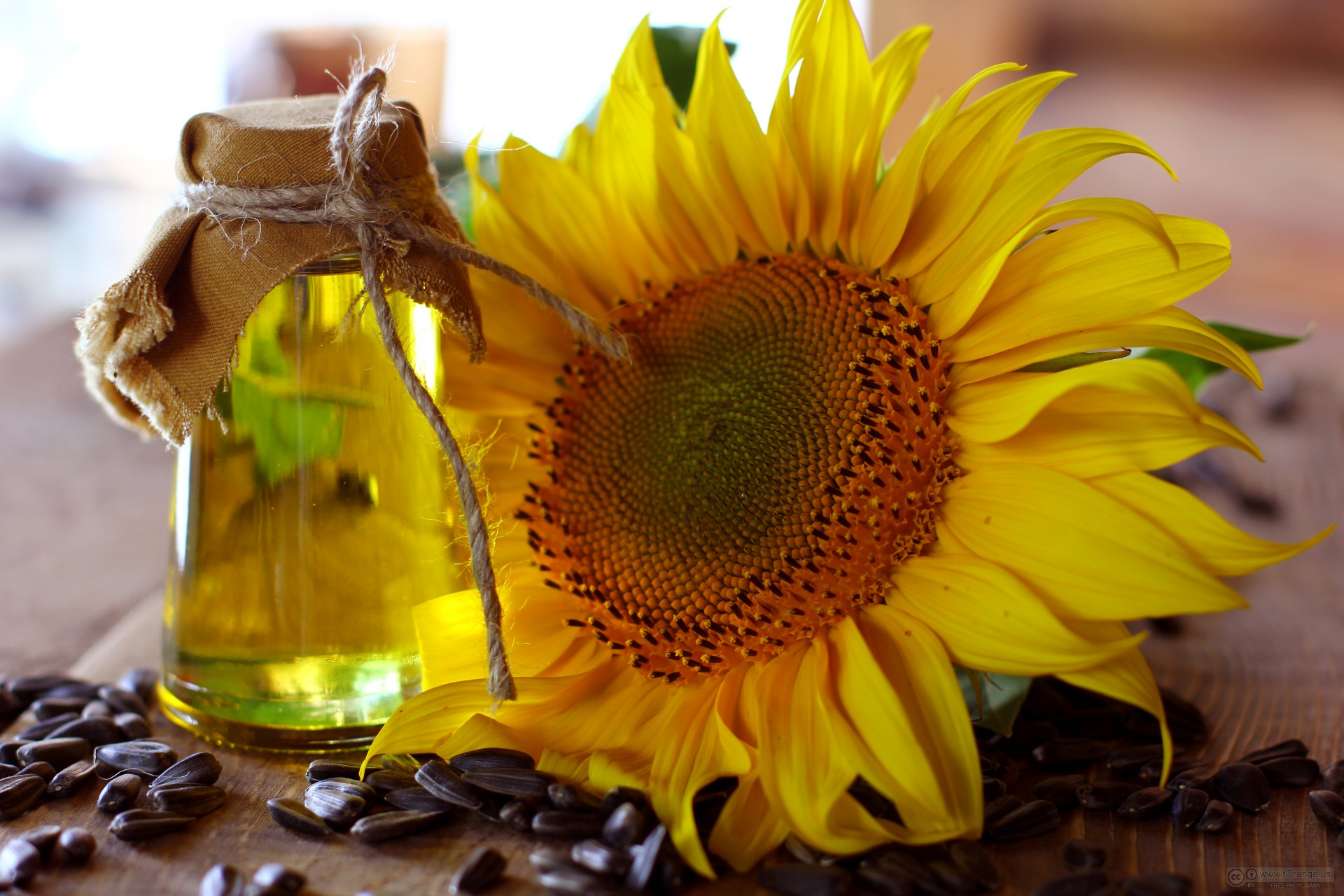 Analysts predict a decrease in prices for Ukrainian sunflower oil - 17.03.2020