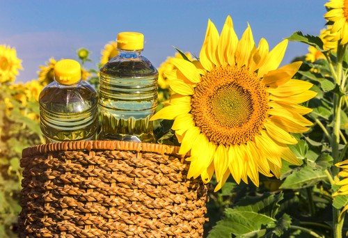 Sunflower oil maintained its positions on the global market during the COVID-19 pandemic – Sunstone Brokers SA