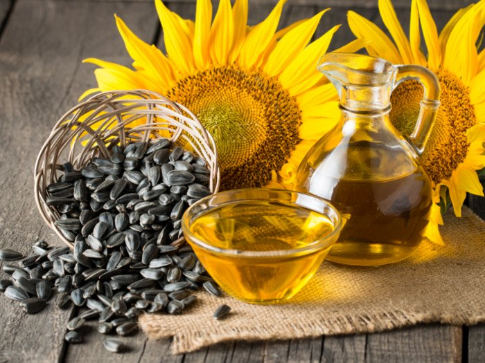 Ukraine increased the production and exports of vegetable oils and meals- 19.11.2019